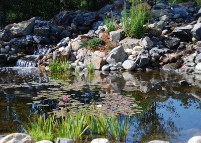 landscape water and stone pond
